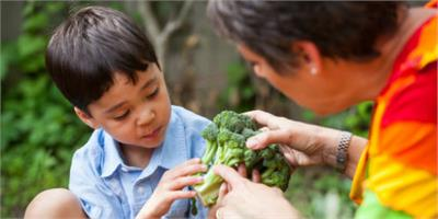 How To Raise a Healthy Eater and Get Kids to Eat Their Veggies