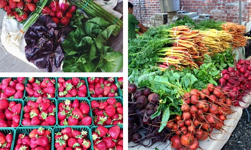 Toronto Farmers' Market Guide: 30 Markets to Visit in the GTA | Help! We've Got Kids