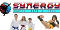 Synergy Martial Arts, Toronto & the GTA