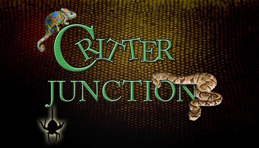 Critter Junction