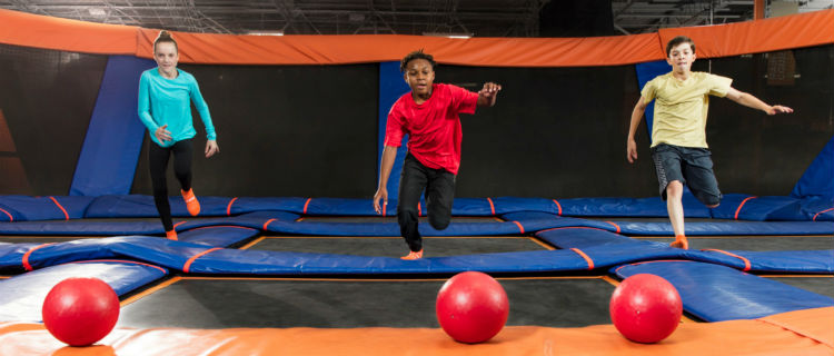 Business Listing: SkyZone Mississauga main - dodgeball