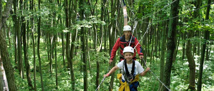 Business Listing: Scenic Cave Nature Adventures