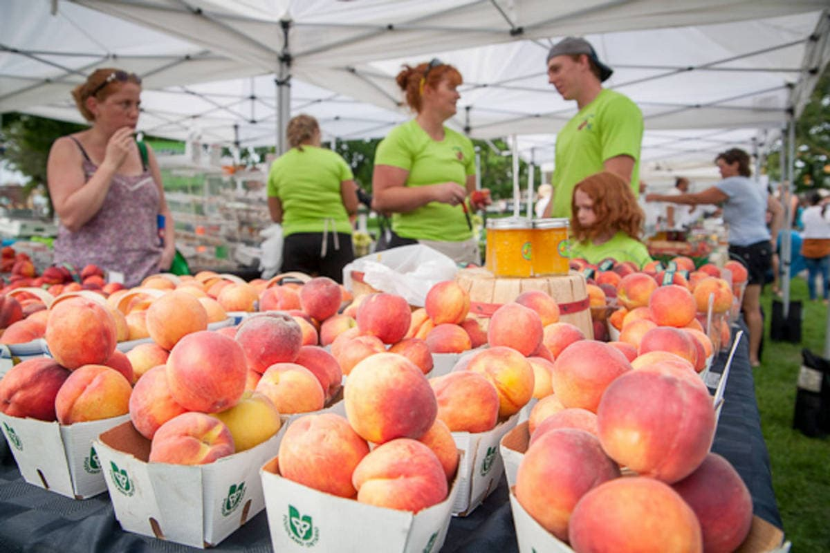 Article: Best Farmer's Markets for Families in Toronto