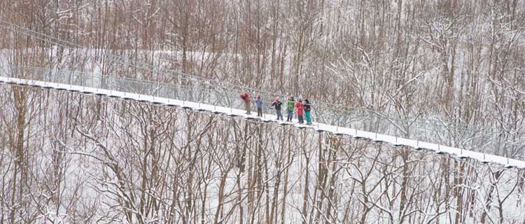 Business Listing: Scenic Caves Nordic Centre