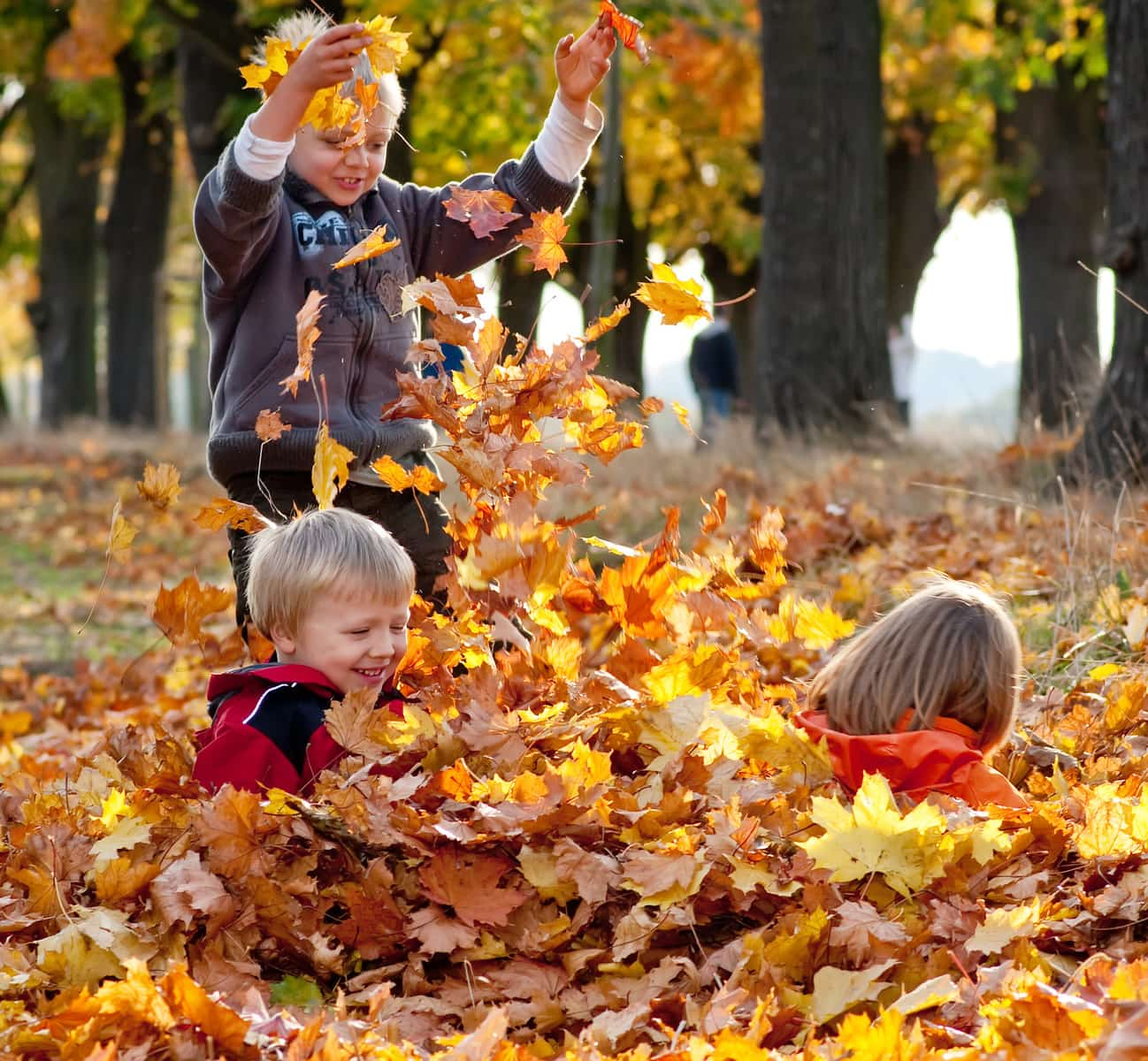 Article: 30 Best Things To Do in the Fall with Toronto Kids