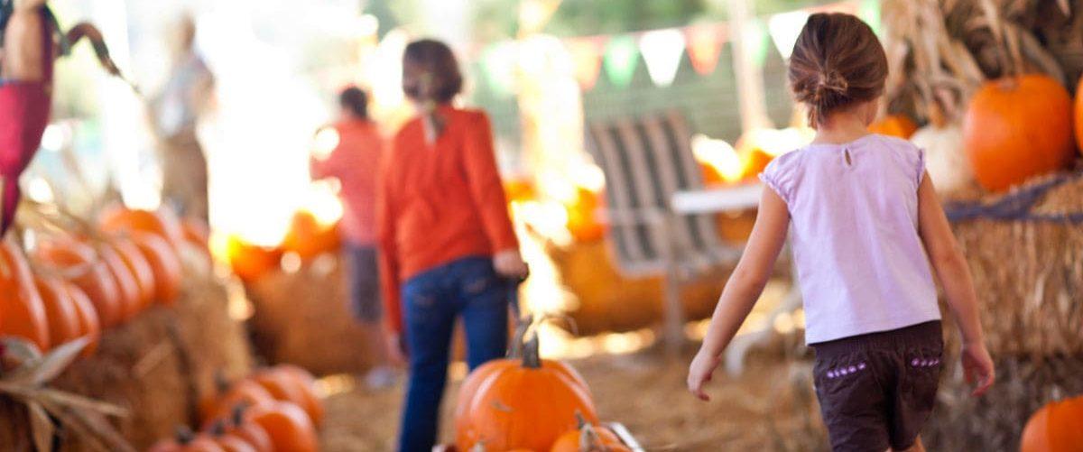 girls dragging pumpkins at fall harvest festival