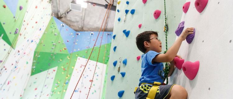 Business Listing: Basecamp Climbing