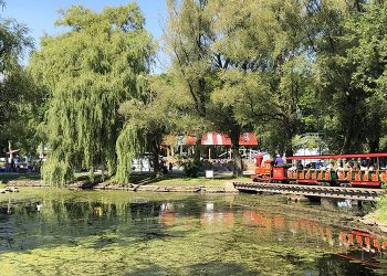 How to Spend a Day on the Toronto Island With Kids