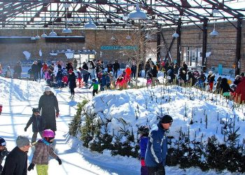 11 Fun Family-Friendly Christmas Events in Toronto