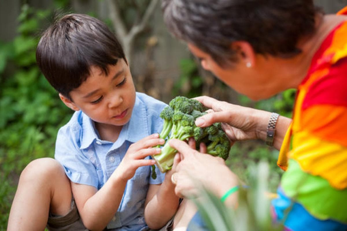 Article: No More Picky Eaters: How To End Mealtime Battles for Good