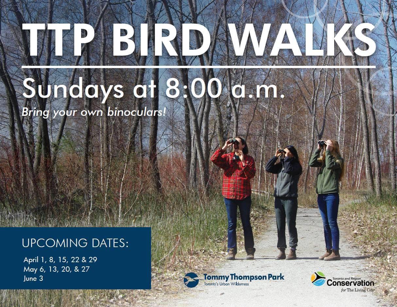 TPP Bird Walk Poster