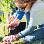 What's Up This Weekend in the GTA: Earth Day Weekend