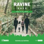 Ravine Days poster