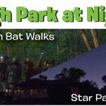 high park at night
