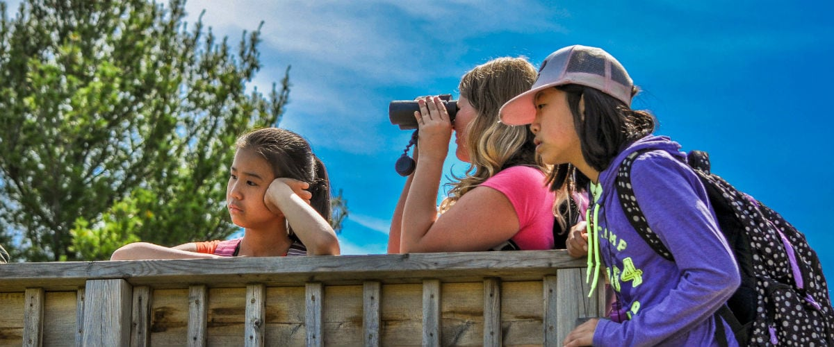 Rouge National Urban Park with Kids - Wilderness in the City