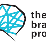 The Brain Project