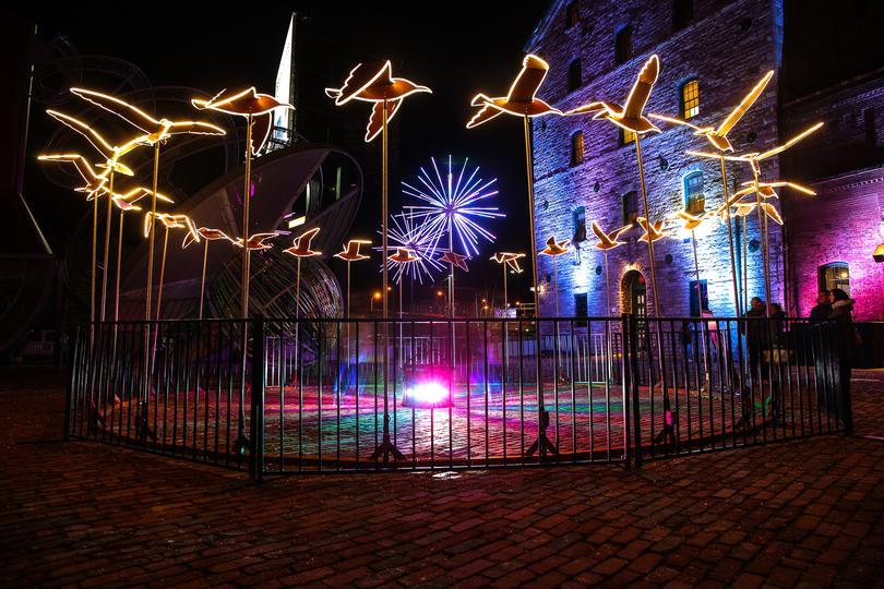 Toronto Light Festival 2020 Help We