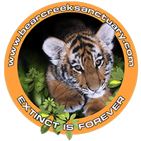 Bear Creek Wildlife Sanctuary