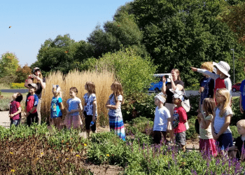 What To Do With Kids This Weekend in the GTA –September 14–15, 2019