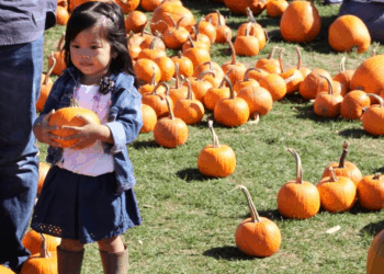 What To Do with Kids This Weekend in Toronto – October 12–13, 2019