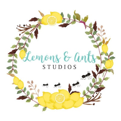 Lemons & Ants Studios
