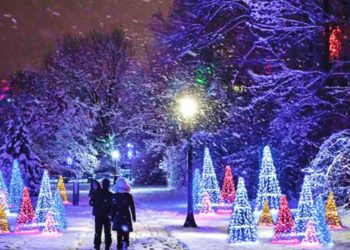 Best 2020 Christmas Events for Kids in Toronto & the GTA (Virtual and In-Person)