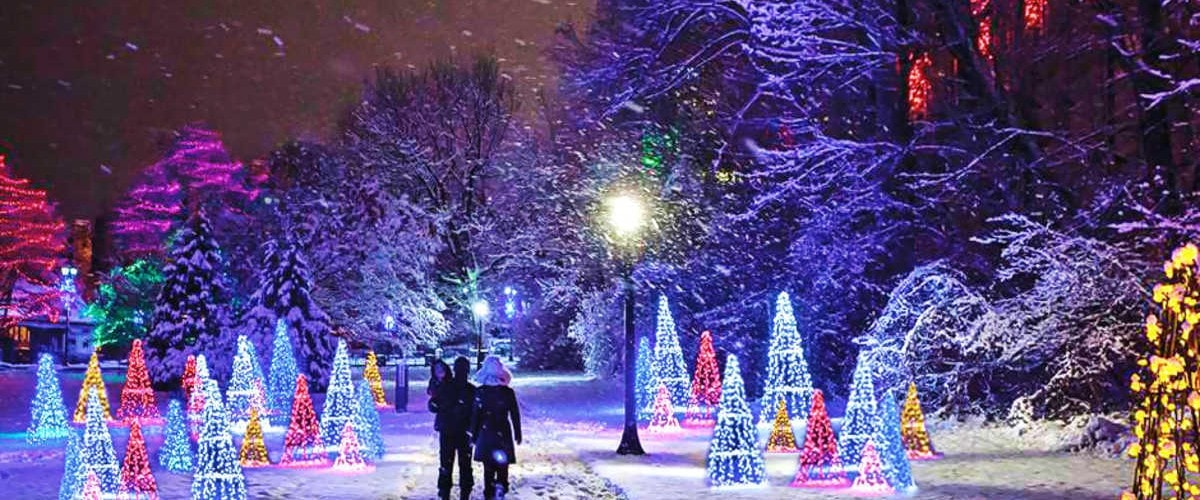 family walking through the Winter Festival of Lights after dark